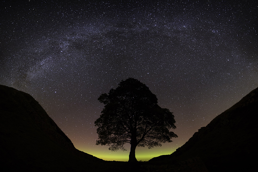 Sycamore Gap - visitnorthumberland.com and A Wallace