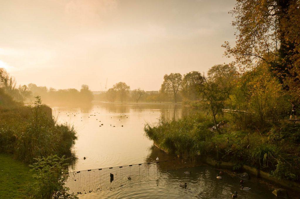 Regents Park | Credit: The Royal Parks