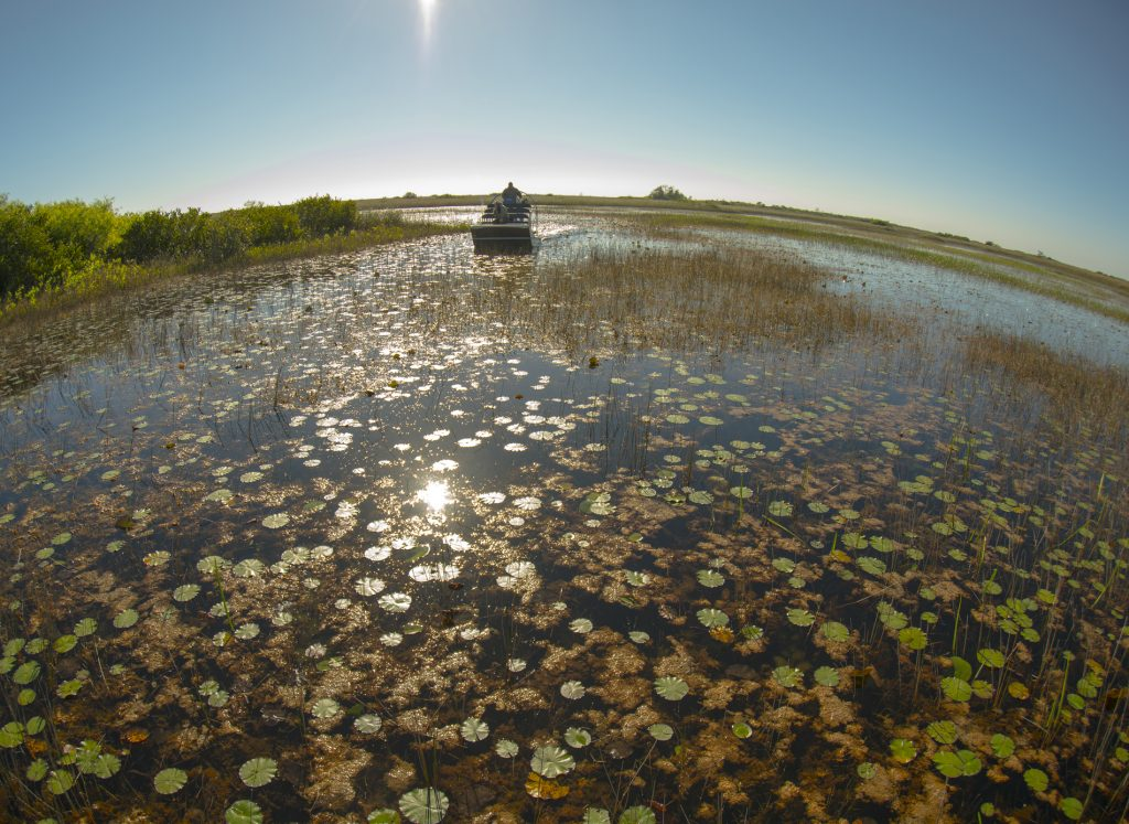 America's Most Beautiful National Parks | Part I | Everglades | www.VisitTheUSA.co.uk