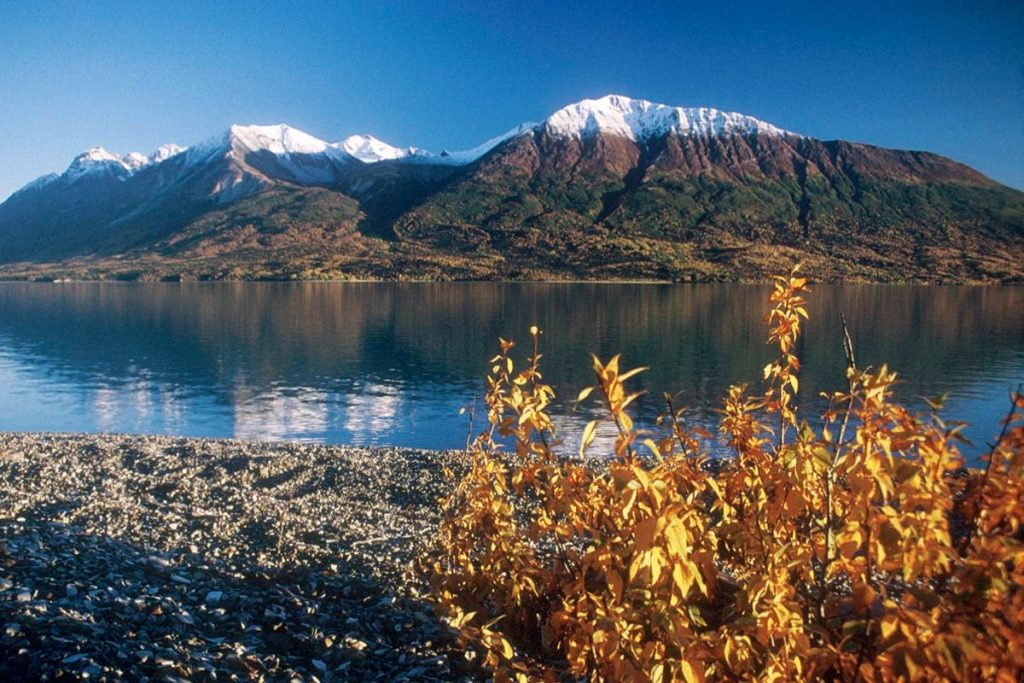 Celebrate The Centennial Of The USA National Parks Service | Lake Clark NP NPS.gov