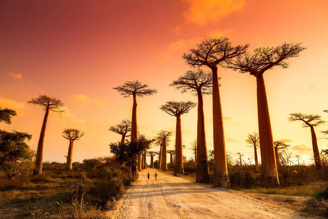 20 Unbelievable Off-the-Grids Getaways | Part I | Bike and Hike Madagascar - Crooked Compass | www.crooked-compass.com/tours/bike-and-hike-madagascar