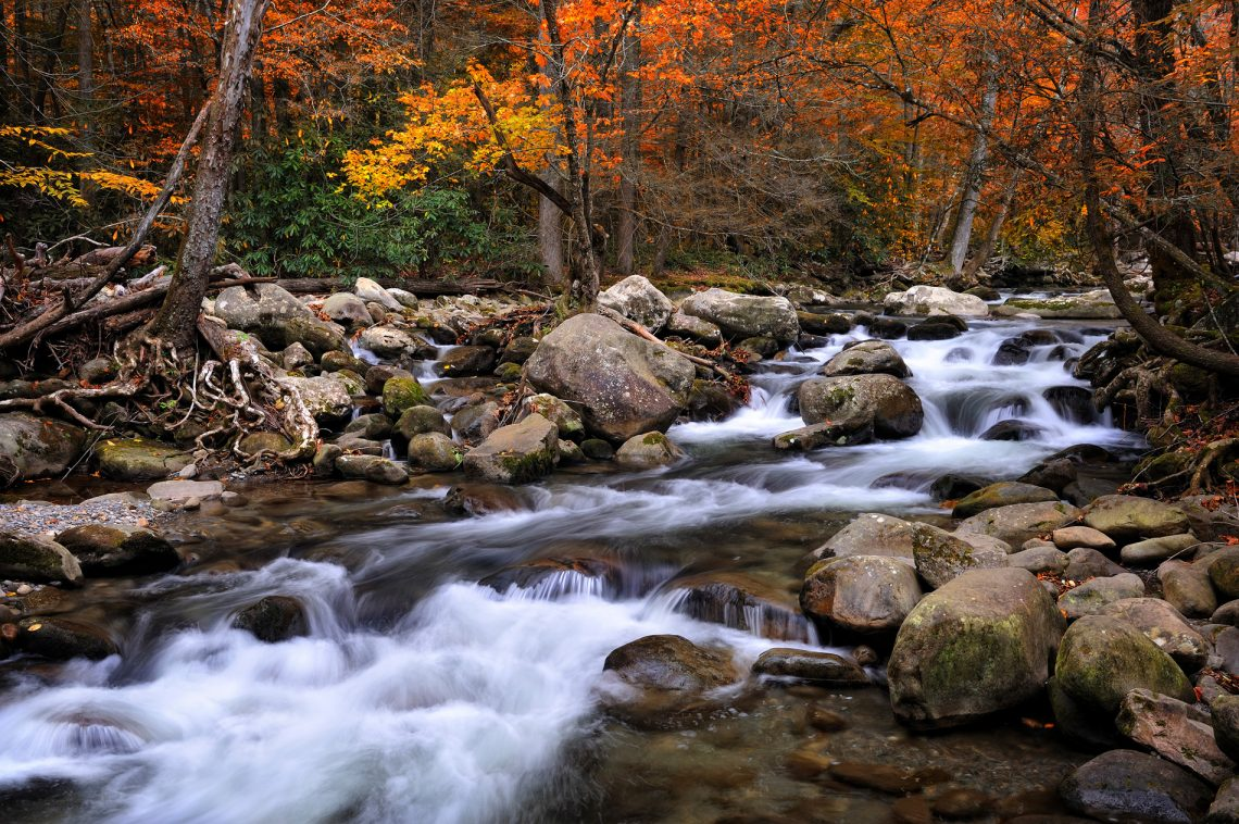 America's Most Beautiful National Parks | Part I | Great Smoky Mountains National Park, North Carolina/Tennesse | www.VisitTheUSA.co.uk | Steve Perry