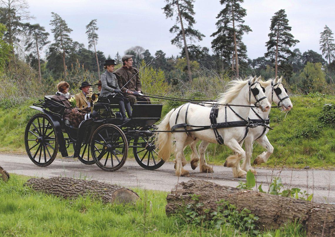 A Most Romantic Interlude Aboard A Horse Drawn Carriage | The Horse Drawn Carriage Company