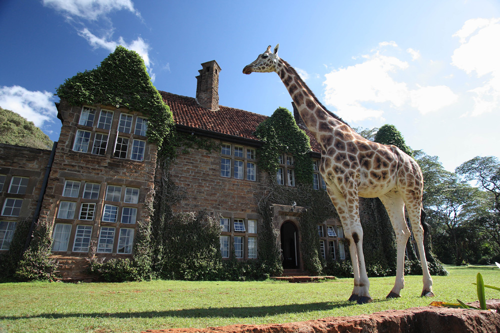 Guide To The World's Best Wildlife Holidays | Part I | Giraffe Manor