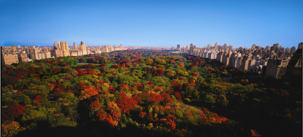 Extraordinary Luxury Autumn Escapes | Part I | Explore Central Park In The Crisp Autumn Air