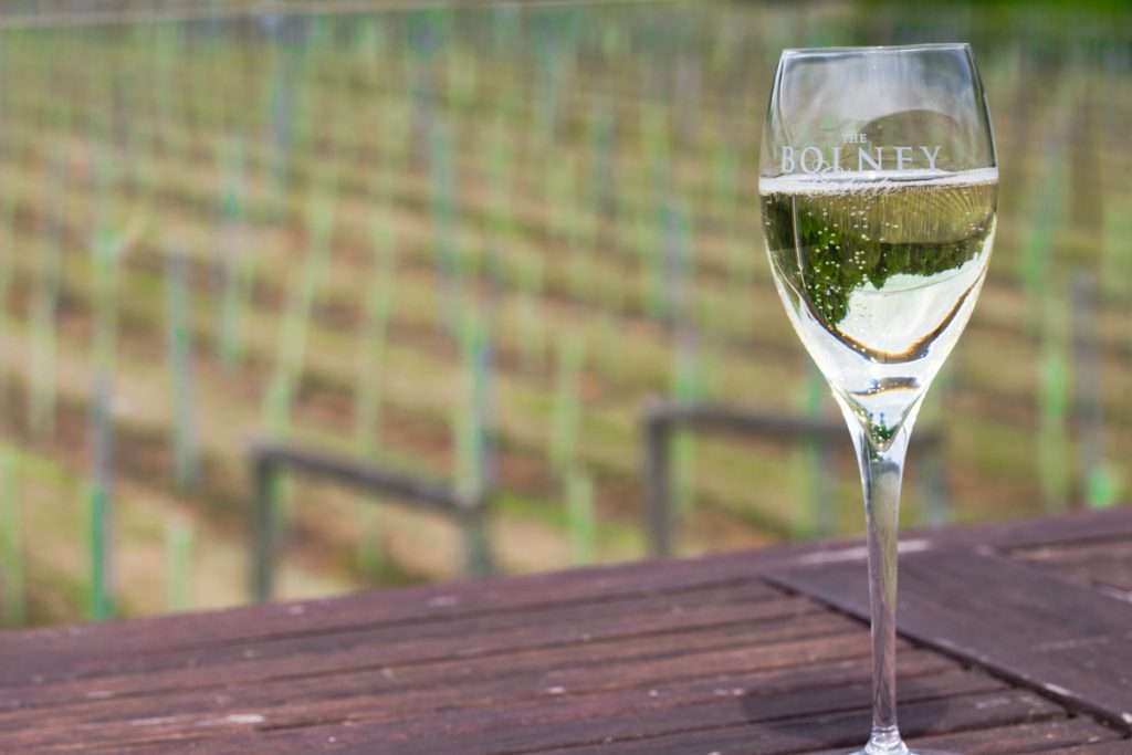 Top 5 English Vineyard Tours | Bolney Estate, Sussex | Best of England