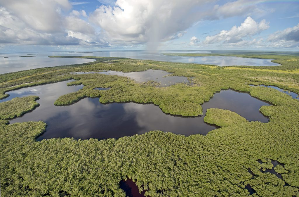 8 Instagramable Spots In Florida | evergladesnationalpark_credit-andy-newman
