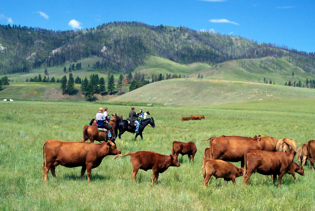 The Finest USA Ranch Stays | Triple Creek Ranch – Montana