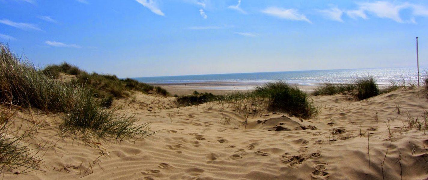 Eat, Sleep, Beach At The Gallivant