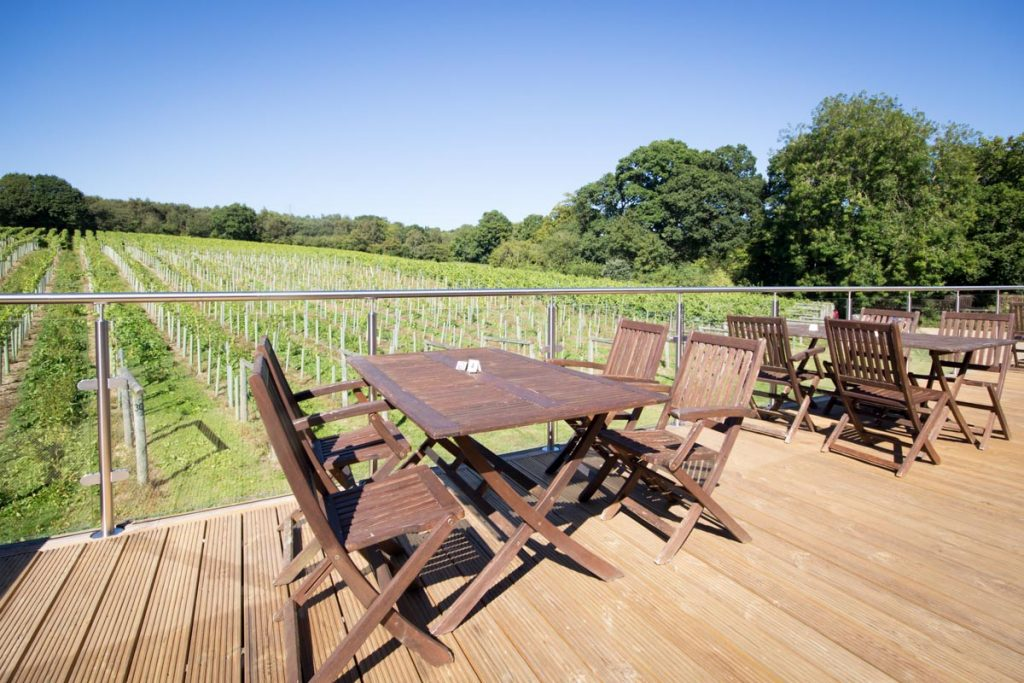 Best of England Vineyard Tours | Bolney Vineyard