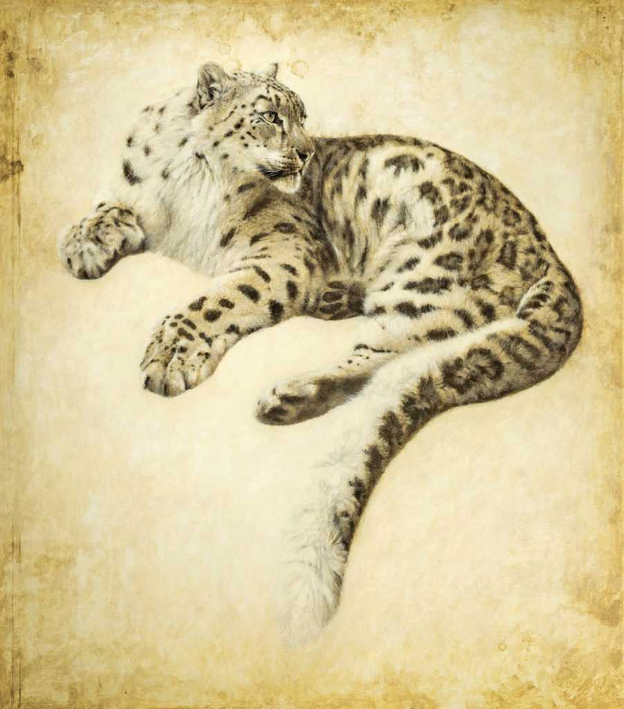 Wildlife Conservation | Atsushi Harada Tomorrow