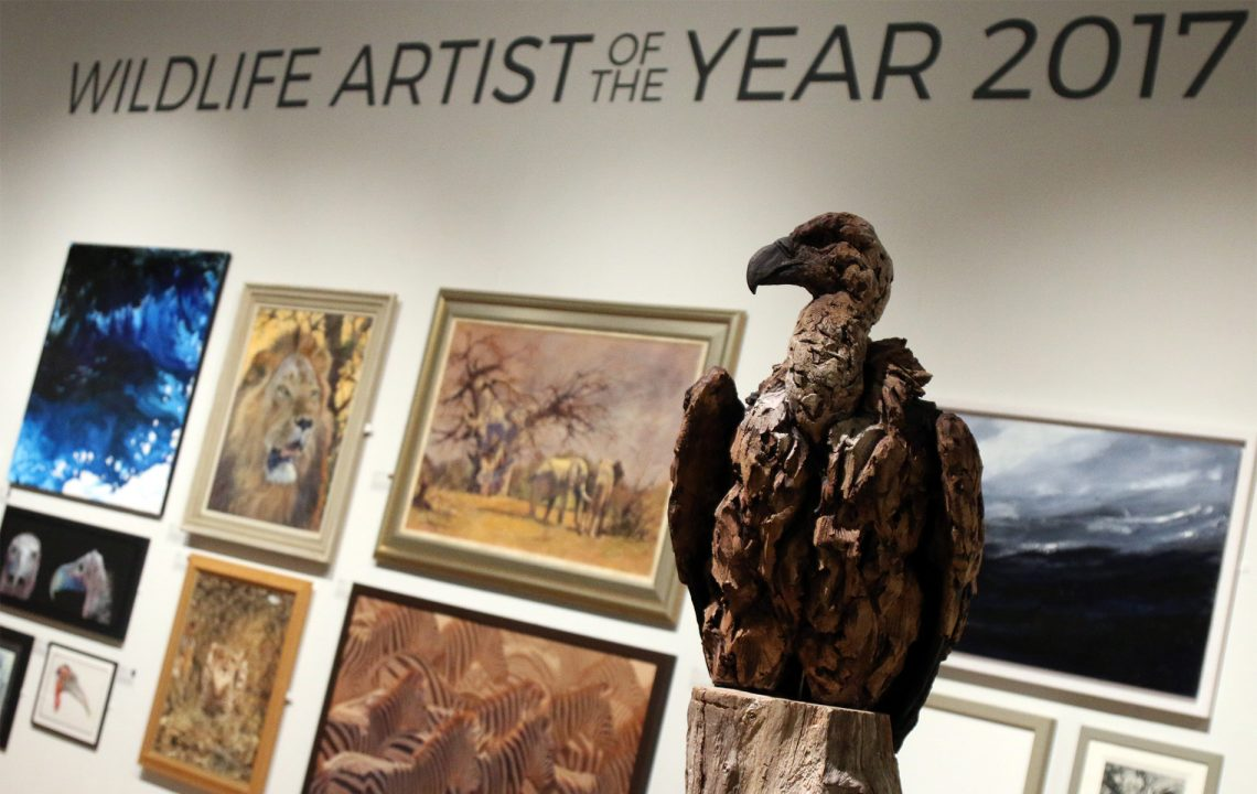Wildlife Conservation | Wildlife Artist of the Year 2017 Mall Galleries until July 2_a