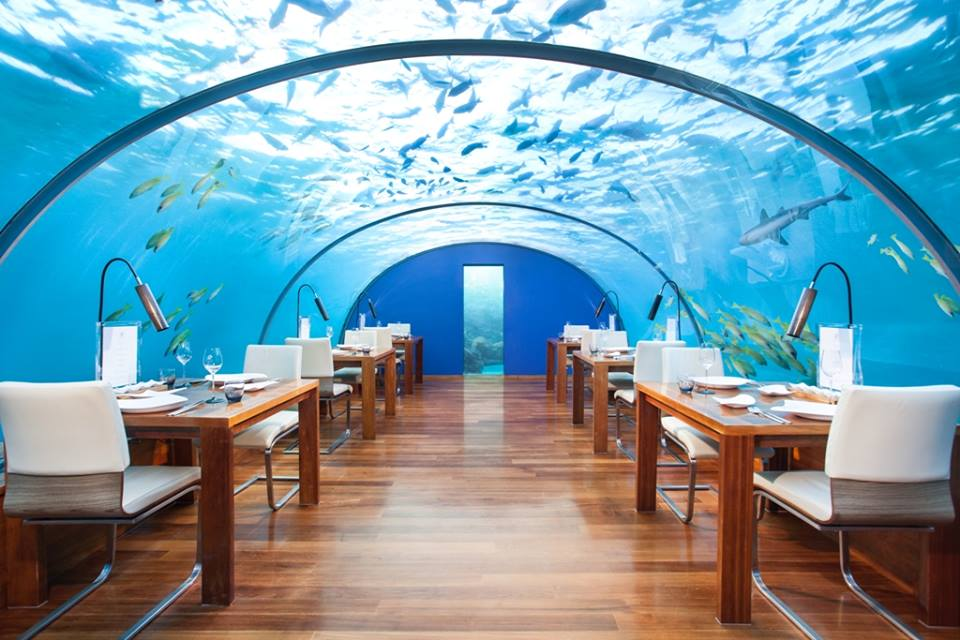 Favourite Festive Playgrounds of the Rich and Famous | •Ithaa Undersea Restaurant (credit The Conrad Maldives Rangali Island Facebook)