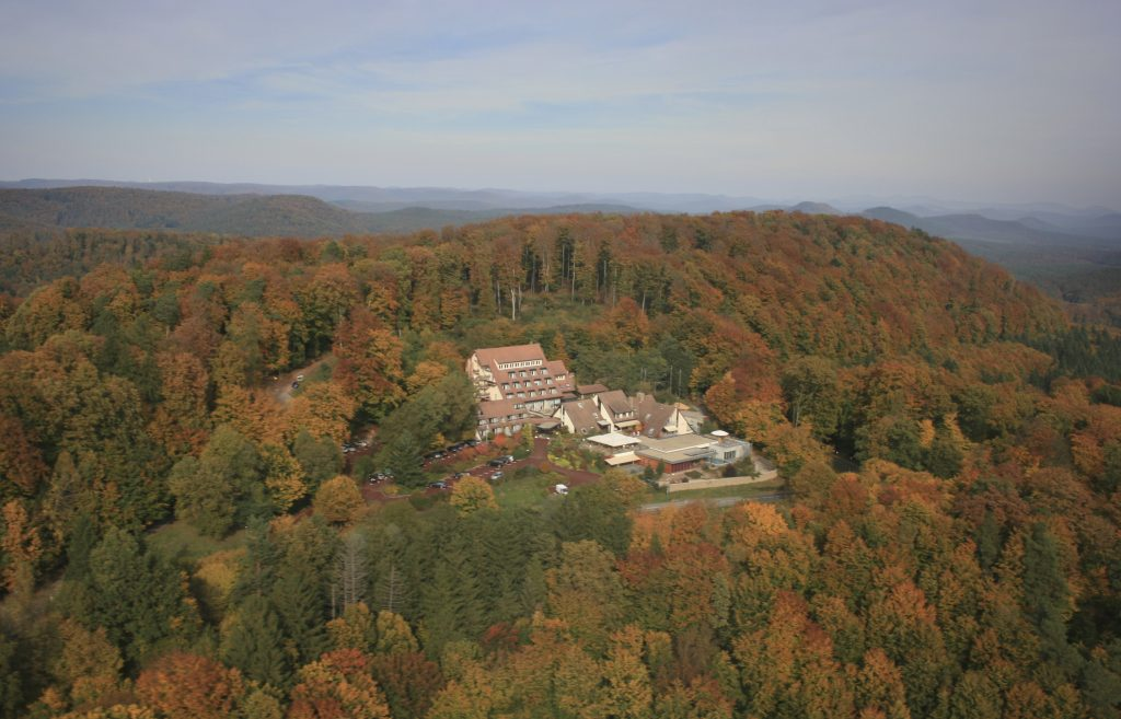 World's Best Forest Bathing Destinations | La Clairière Bio & Spahotel – France | For advice, guidance and booking visit www.healthandfitnesstravel.com or call 0203 397 8891.