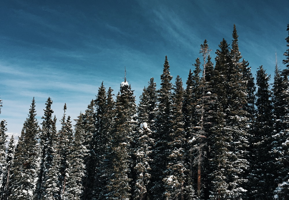 Favourite Festive Playgrounds of the Rich and Famous | Aspen Colorado