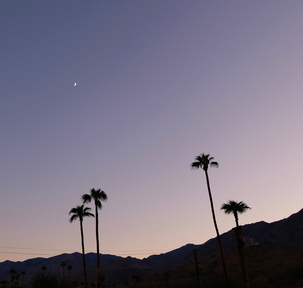 12 of the Best Stargazing Spots in the USA | Greater Palm Springs, California