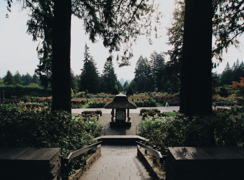 A-Z of Portland, Oregon | R is for Rose Test Garden | Photos by Hero & Leander