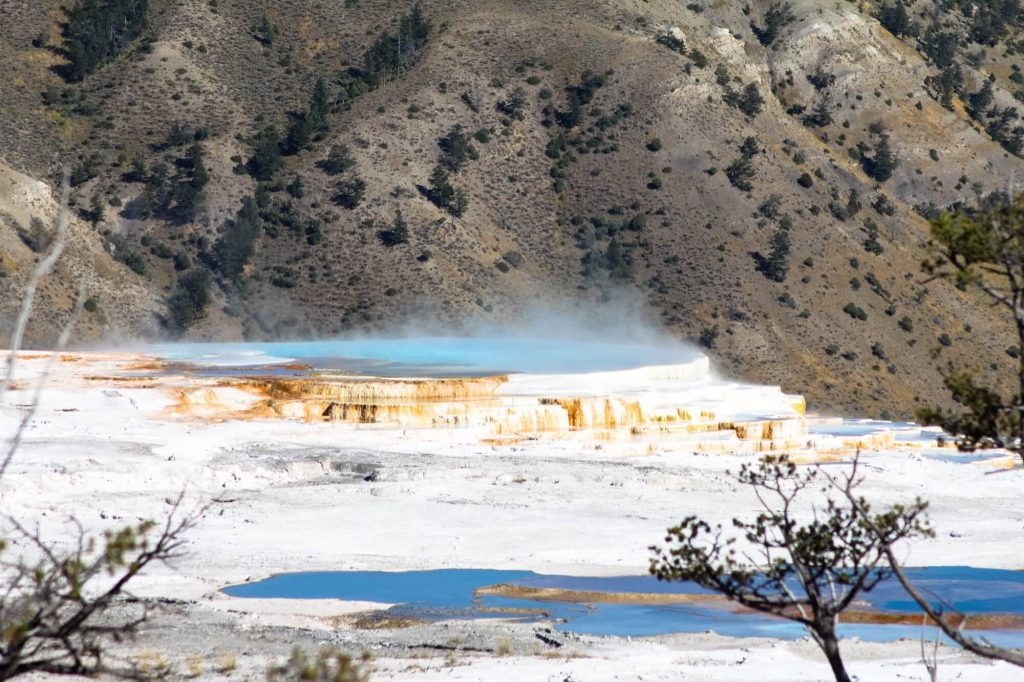 Mammoth Hot Springs | Yellowstone Road Trip